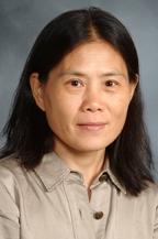 Wenhui Jin, M.D., FACOG